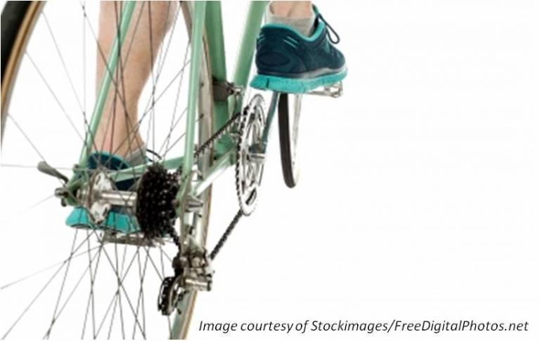 The Apprentice Cyclist