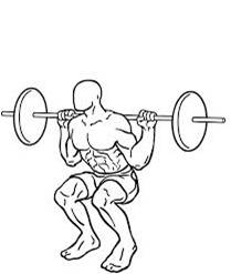 A drawing of someone doing a squat and deadlift