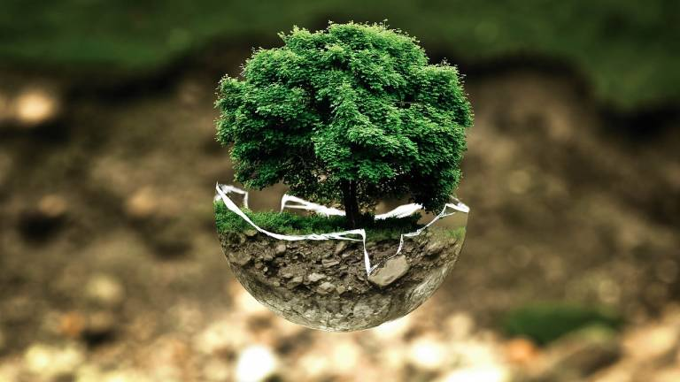Sustainability in Physiotherapy