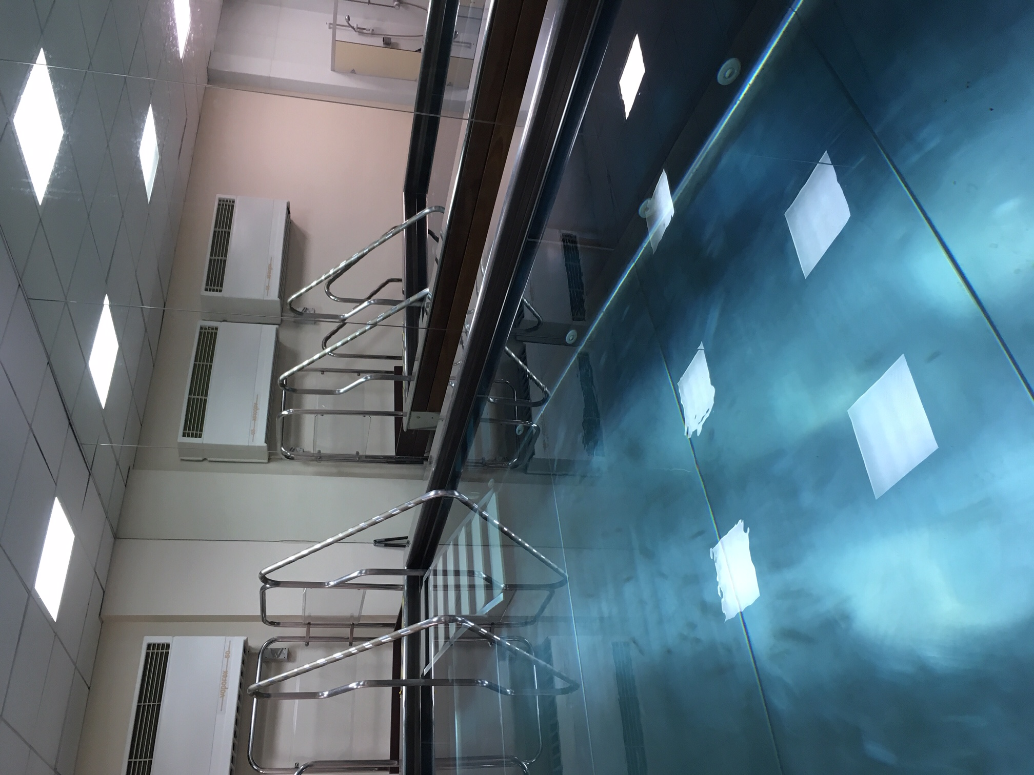 hydrotherapy pool st johns wood