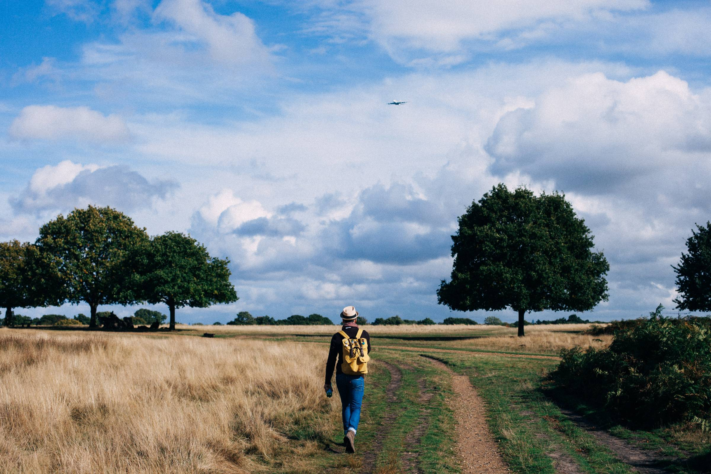 The Benefits of Walking Every Day