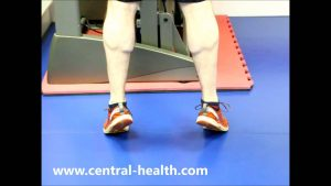 Double Leg Calf Raise Exercise Video
