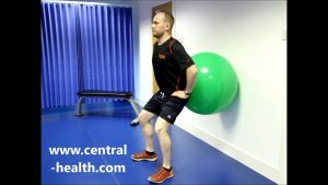 Squat with Gym Ball Exercise Video